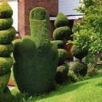 Topiary finger 150x150 Чайки бомбардируют дом британки разноцветными шариками