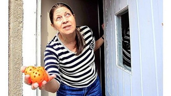 4154294 Чайки бомбардируют дом британки разноцветными шариками