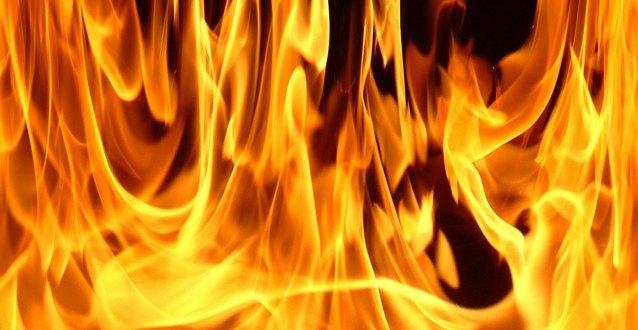 fire Одного американца арестовали за то, что он зарядил телефон в парке, другого ударили электрошоком за попытку потушить пожар
