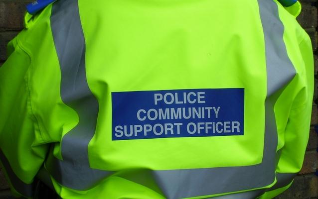 pcso В Англии разогнали отряд полицейских бездельников