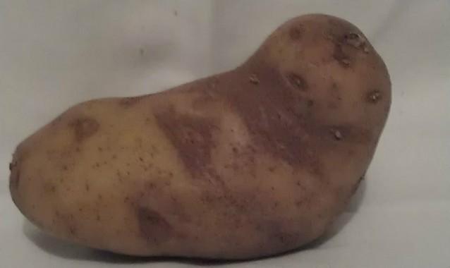 На eBay продается картофелина в виде Джаббы Хатта