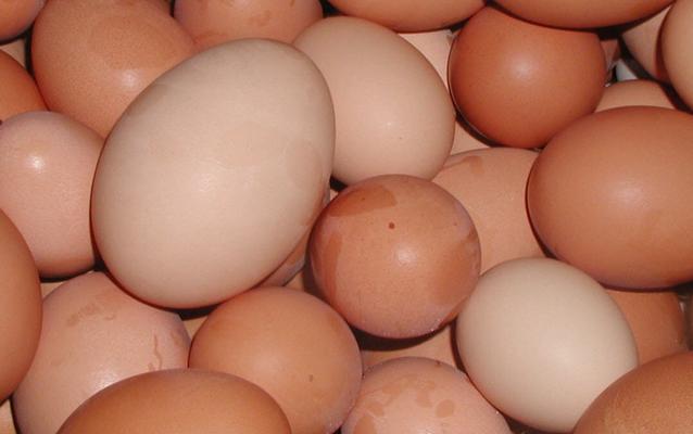 eggs Пятеро полицейских в США забросали яйцами дом старшего по званию
