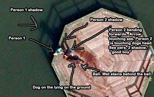 dog pier 2 Сцена убийства на картах Google Earth оказалась мокрой собакой