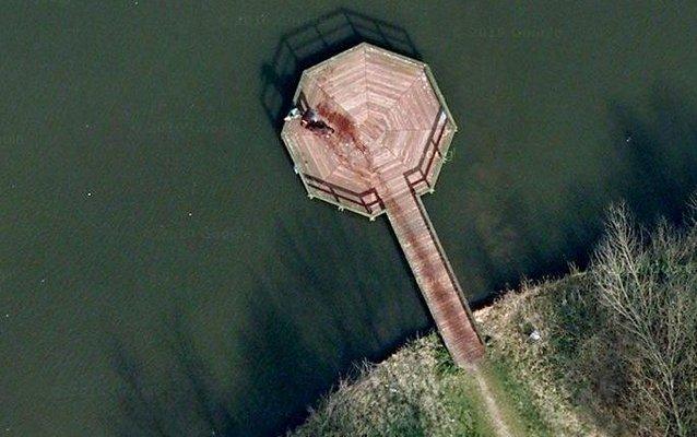 «Сцена убийства» на картах Google Earth оказалась мокрой собакой