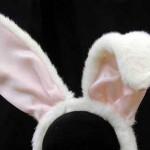 BunnyEars 150x150 В 2012 году в мире было продано 100 миллиардов упаковок лапши быстрого приготовления